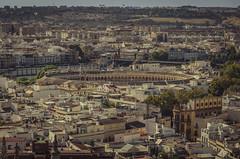 Seville from the Giralda (pelpis) Tags: sevilla city cityscape ciudad photosevilla flickrsevilla seville urban urbanlandscape urbanscene urbanscape urbanstyle places view horizon maestranza plazadetoros