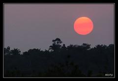Amazonie - Soleil couchant sur la Pampa de Yacuma (M@P31) Tags: rurrenabaque paysage sonya77 thaki landscape rioyacuma 2016 bolivia prairiesinnondées amazonie beni bolivie sigma1770c pampa réserveyacuma sunset atardecer coucherdesoleil