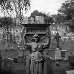 (patrickjoust) Tags: tlr twin lens reflex 120 6x6 medium format black white bw home develop film discontinued expired kodak blancetnoir blancoynegro schwarzundweiss manual focus analog mechanical patrick joust patrickjoust baltimore maryland md usa us united states north america estados unidos urban street city