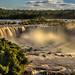 Rivadavia Waterfalls in Iguazu Falls
