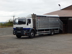 RO02 OJD (Jonny1312) Tags: lorry truck livestocktruck cattletruck sheeptruck pigtruck livestocklorry cattlelorry sheeplorry piglorry kilrea kilrealivestockmarket