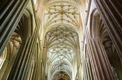 06 astorga catedral nave principal (xabyjordi) Tags: caminosantiago camino santiago leon bierzo astorga roble bosque