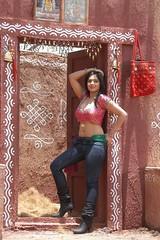 Indian Actress NIKESHA PATEL Hot Sexy Images Set-1 (13)