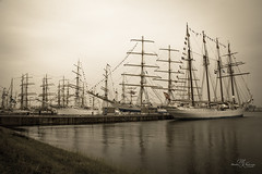 Undeniably beautiful Tall Ships (Monika Kalczuga (on&off)) Tags: tallships saildenhelder denhelder holland netherlands ships boats yachts jachty sepia monochrome blackandwhite marina haven port harbour masts moored jachten
