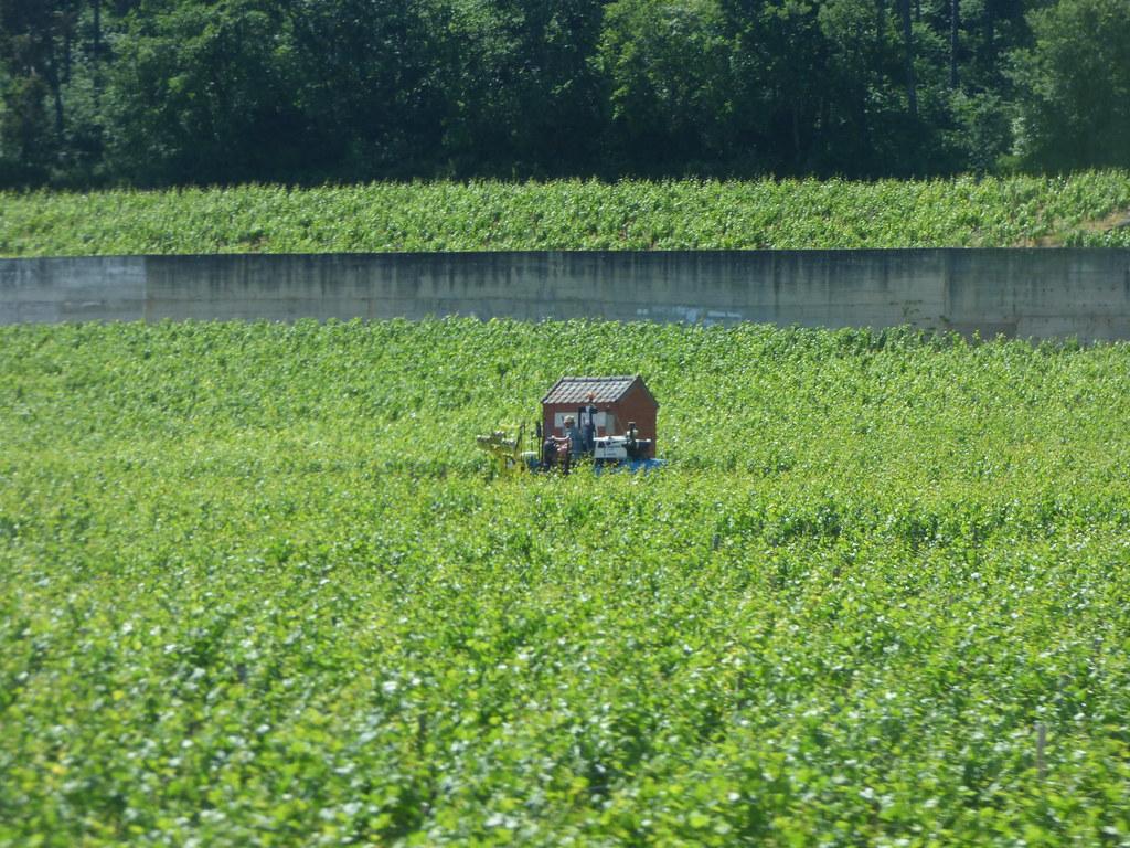 ブルゴーニュのブドウ畑のクリマの画像 p1_4