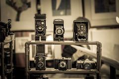 Past (Ederson Gomes) Tags: t2i artesanal sp old 85mm city artista canon pinheiros brasil beneditocalixto passado feirinha arte vida rolleicord minolta brazil life máquinasfotográficas velhas cidade past metrópole art