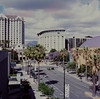Plaza de César Chávez, San Jose (bior) Tags: sanjose plazadecésarchávez parkavenue palmtree downtownsanjose kowa6 kowasix kowa kodakektachromee200 ektachrome expiredfilm