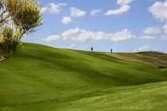 immersi nella campagna toscana... (Renato Pizzutti) Tags: toscana squiricodorcia campagna cipressi alberi provinciadisiena verde giallo colline poggi prati ginestra nikon renatopizzutti