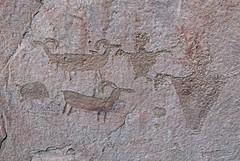 Petroglyphs / Mill Creek Canyon (Ron Wolf) Tags: anthropology archaeology fremont nativeamerican anthromorph anthropomorph bighornsheep javelina panel petroglyph pig rockart snake zoomorph utah
