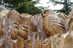 Owl carving (cj_hunter) Tags: owlcarving owl carving architecture sculpture canada britishcolumbia grousemountain wood nature bird birds
