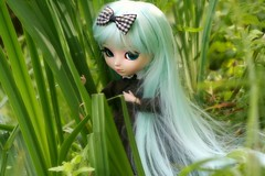 I think I'm lost... (Sad Sugar) Tags: pullip doll poupée hatsune miku cute obitsu