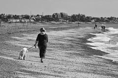 Dog Walker (Cashier No. 4) Tags: felixstowe suffolk landguardpoint cashierno4 cashiernumberfour mono blackandwhite blackwhite dog dogwalker