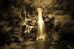 Ballard Waterfall Monochrome (oconnellto) Tags: waterfall ballardwaterfall araglin monochrome bw blackandwhite sepiatone water araglincountycork canon500d landscape irelandlandscape