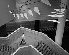 Art Lover (waarondaniel) Tags: moma san francisco modern art sculpture street geometry geometric bw grainy grain stairs staircase steps woman museum