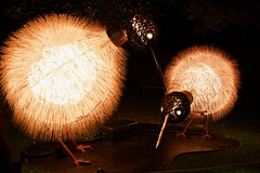 Warm and Fuzzy (Aviator195) Tags: nikon nikond7100 d7100 night nighttime nightphotography light dark vivid vivid2017 vividsydney sydney sydneybotanicalgardens botanical botanicalgardens gardens city australia winter