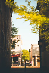 urban frame (KieraJo) Tags: 100mm 28 canonef100mmf28macrousm bokeh canon 5d mark iii 3 5 d 5d3 fullframe dslr outdoor photography outside pretty summer trees clear sky buildings urban photo manmade logan utah cache valley downtown alley tree green