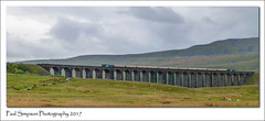 Ribblehead Viaduct and train (Paul Simpson Photography) Tags: northyorkshire railway train paulsimpsonphotography imagesof imageof photoof photosof yorkshiredales drs directrailservices ribbleheadviaduct yorkshire lumix panasonic may2017