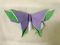 Oppenheimer/Lang hybrid butterfly (Brian Ritchie) Tags: michaellafosse butterfly origami