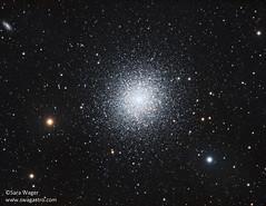 M13 - The Great Globular Cluster in Hercules (Sara Wager (www.swagastro.com)) Tags: sarawager swagastro wwwswagastrocom astrophotography astro astronomy astrodon astronomia cosmos cosmology deepspace dso deepskydso globular globularcluster m13 hercules telescope universe space sky skyatnight stars star mount mesu mesu200 qsi683 tmb tmb1521200 refractor ngc6205