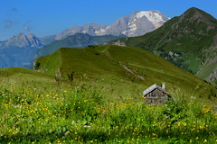 Dolomites (annalisabianchetti) Tags: dolomites dolomiti mountains montagne paesaggio landscapes italy fields baita rural travel veneto giau