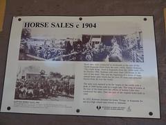 Kapunda. Information board about Sir Sidney Kidmans horse auctions. Held behind the North Kapunda Hotel. (denisbin) Tags: kapunda horse salessir sidney kidmankidmanhitching foundrycast ironsir kidmanhitching posthitching ring