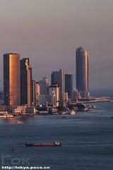 Xiamen skyline (Гок) Tags: highview cityskyline city skyscrapercity skylines 城市天际线 福建 厦门 sunset skyscraper skyline xiamen