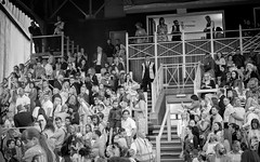 A Face In The Crowd (Number Johnny 5) Tags: tamron nikon crowd newmaketnights people littlemix 2017 candid monochrome 2470mm white glorydays concert black audience bw newmarket 2470