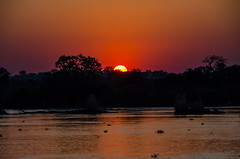 Africa Trip-4 (thomasharvey2) Tags: 2015 africa taucktours zambeziriver zambia sunset