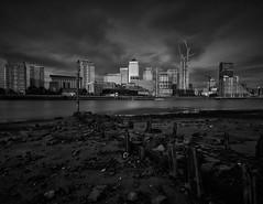 Nelson Dock (darrenjames.photography) Tags: cityscape thames rotherhithe london longexposure nikon blackandwhite canarywharf