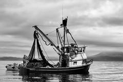Life At Sea (rishaisomphotography) Tags: blakandwhite ocean sea fishing kodiak alaska water