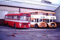 Howe Bridge Depot (ee20213) Tags: lancashireunited eastlancs renown howebridgedepot northerncounties utd295h 1975tj 1974tj 332 lut 6928 6927 aec bristolrh