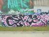 1519 (en-ri) Tags: zeb bianco nero rosa viola parco dora torino wall muro graffiti writing