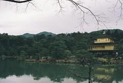 golden temple (DianaDocherty) Tags: temple golden goldentemple film kyoto japan filmphotography ishootfilm japanesegarden