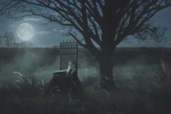 охраняю сны (Anastasia Kosh) Tags: ночь королева трон луна девушка girl outdoor tree moon moonlight dark darkness dream throne queen landscape art dress vampire sombre
