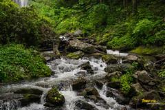 Flowing Water (Thomas Reese Photography) Tags: helen georgia mountains northgeorgia helengeorgia