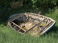 Abandoned (Lluniau Clog) Tags: derelict rowingboat boat