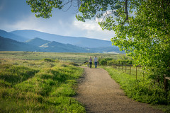 spring hike (andy_8357) Tags: sony a6000 ilcenex ilce6000 6000 alpha sigma 60mm f28 dn art spring green landscape mountains grass hike hiking hikers dog trail hidden valley boulder co colorado afternoon fresh couple man woman late shadows relaxing relaxed enjoyable fun casual leisure strolling walking cattle