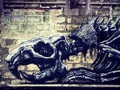 Roa @ to the Bone urbex expo #roa #totheboneexpo #urbex #streetart #graffiti #gent #ghent (_Kriebel_) Tags: instagramapp square squareformat iphoneography uploaded:by=instagram xproii kriebel uploadedviaflickrqcom street art brussels bruxelles brussel graffiti urban urbain