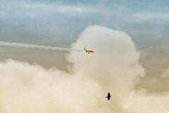 ABC_8651s (savillent) Tags: canadian aviation tour planes flight airshow arctic ocean sky clouds stunts north transport canada navcanada air photography june 2017 tuktoyaktuk northwest territories celebrate 150 years