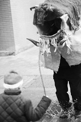 antruejos_13 (alfonso_gm) Tags: antruejos carnaval astorga spain leon celtic ritual wintermasks