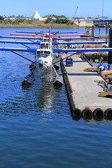 Victoria Harbour planes in a row (Bill 1.75 Million views) Tags: harbor harbour victoriaharbour victoriaharbor visitors tourists boats planes fishing cruiseships cruise whales whalewatching salishseadream salishsea fishboats innerharbour victoriabc innerharbourt3i