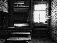 zugesponnen (Paramedix) Tags: farmhouse bauernhaus fluorn germany deutschland badenwürttemberg olympus em5 mft sw bw black white schwarz weis old alt verlassen abandoned