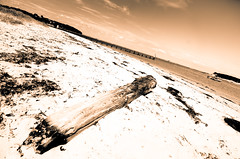 Parched (Alex . Wendes) Tags: beach sthelens sthelensbeachfront polarizer circularpolarizer lithalike digitallith sea seafront flickrgolfclub d7000 nikond7000 tokina1116mm toneddigitalbw isleofwight iow
