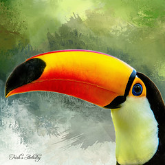 Toucan (Trish's Artistry) Tags: toucan birds textured