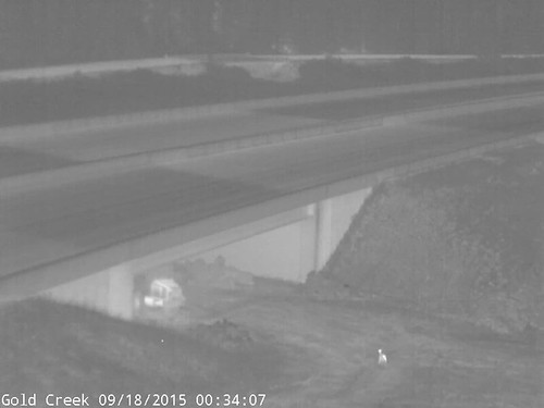 "A series of deer moving under I-90 • <a style=""font-size:0.8em;"" href=""http://www.flickr.com/photos/44104179@N02/35442741021/"" target=""_blank"">View on Flickr</a>"