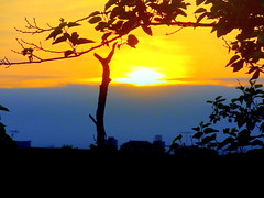 New York Sunset (dimaruss34) Tags: newyork brooklyn dmitriyfomenko image spring sky clouds trees sunset