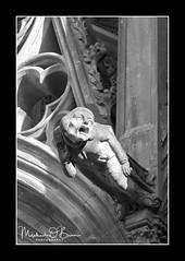 Gargoyle (MPOBrien) Tags: gargoyle france carcassonne nazaire