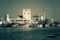 Hoy todo el hielo en la ciudad (mujik estepario) Tags: pentaxk5iis pentaxlife pentax pentaxart mardelplata barcos virado puerto