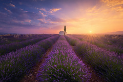 The Little House (Raúl Podadera Sanz) Tags: valensole france lavanda lavander sunset sunrise colors flowers house little travel francia provence provenza fields amanecer atardecer