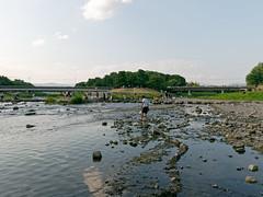 鴨川デルタ KAMOGAWA DELTA (SHIBATA KEN) Tags: japan 日本 kyoto 京都 kamogawadelta 鴨川デルタ kamogawa 鴨川 river 河 川